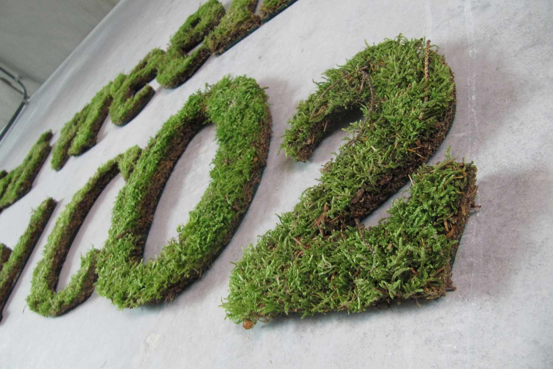 Planten - Planten kunnen worden gerangschikt in patronen die onze ogen herkennen als letters en vormen, waardoor ze perfect geschikt zijn voor het produceren van communicatieberichten en bewegwijzering. Levend planten hebben onderhoud nodig. Het hier afgebeelde mos zal slechts een paar weken meegaan. Perfect voor evenementen.Droge planten en mossen gaan jaren mee. Velen zijn behandeld met brandvertragende materialen.Duur: 1 week tot meerdere jarenNeem contact met ons op