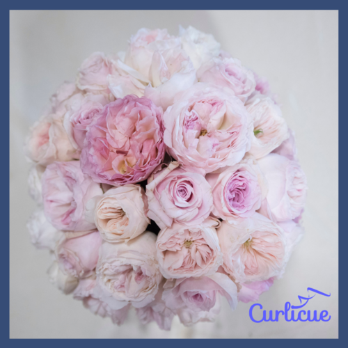 Image Credit:  Pinstripes and Peonies