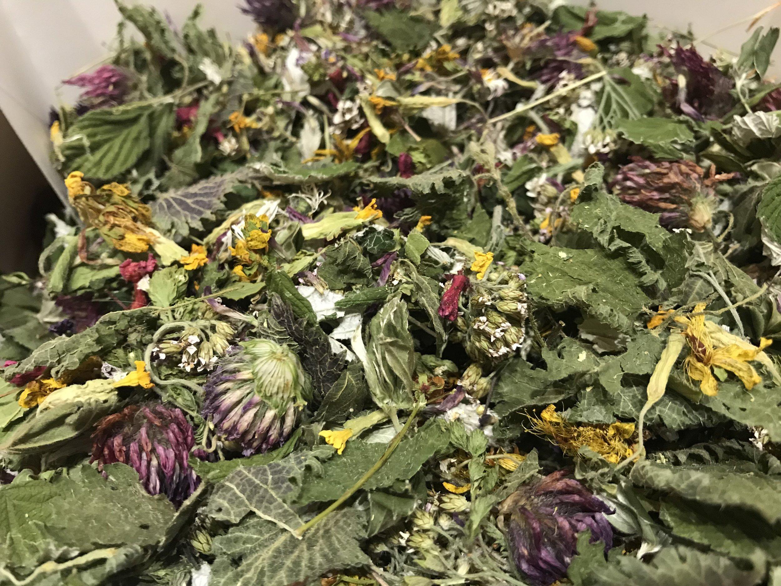 Mixed Herbs.jpg
