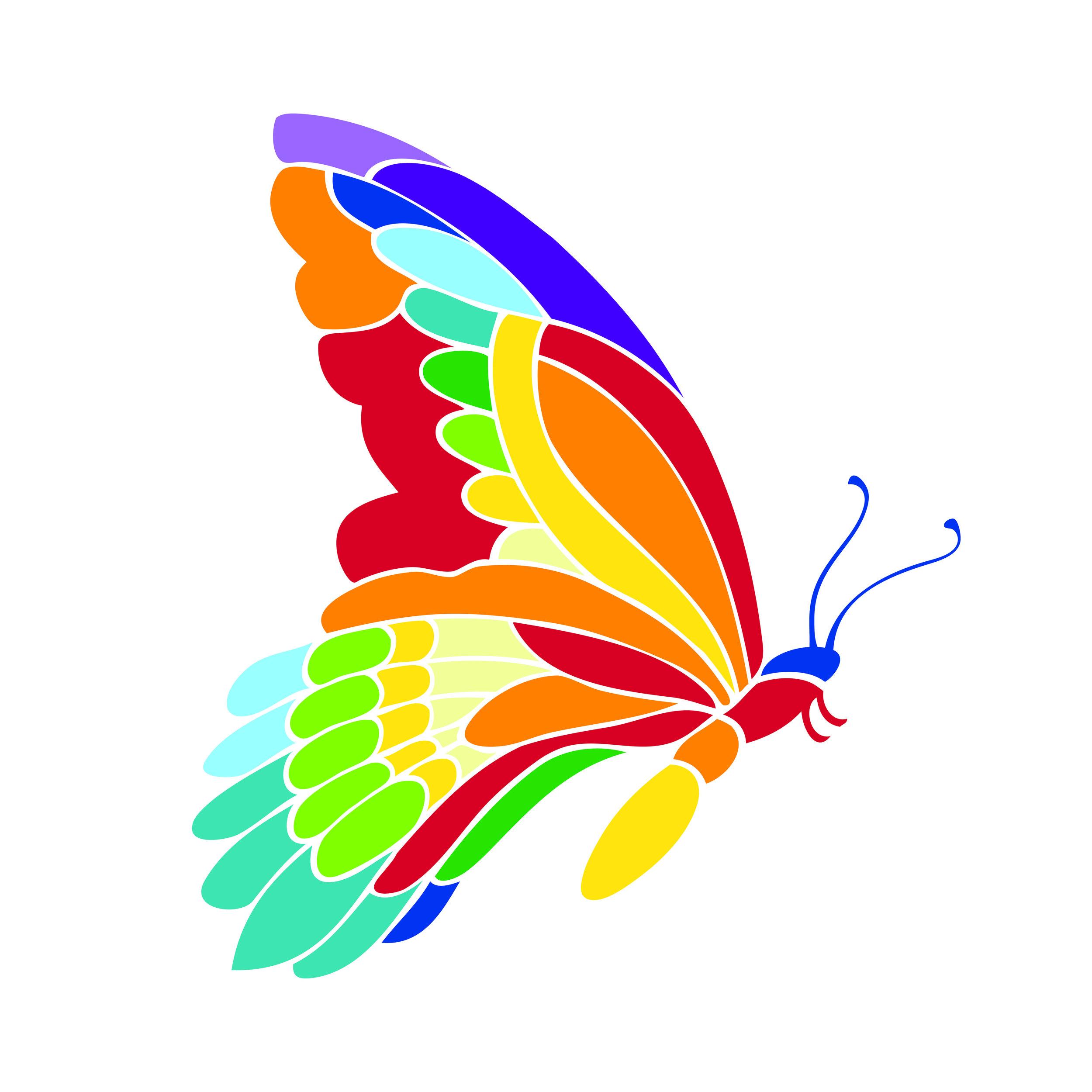 SAFI_butterfly.jpg
