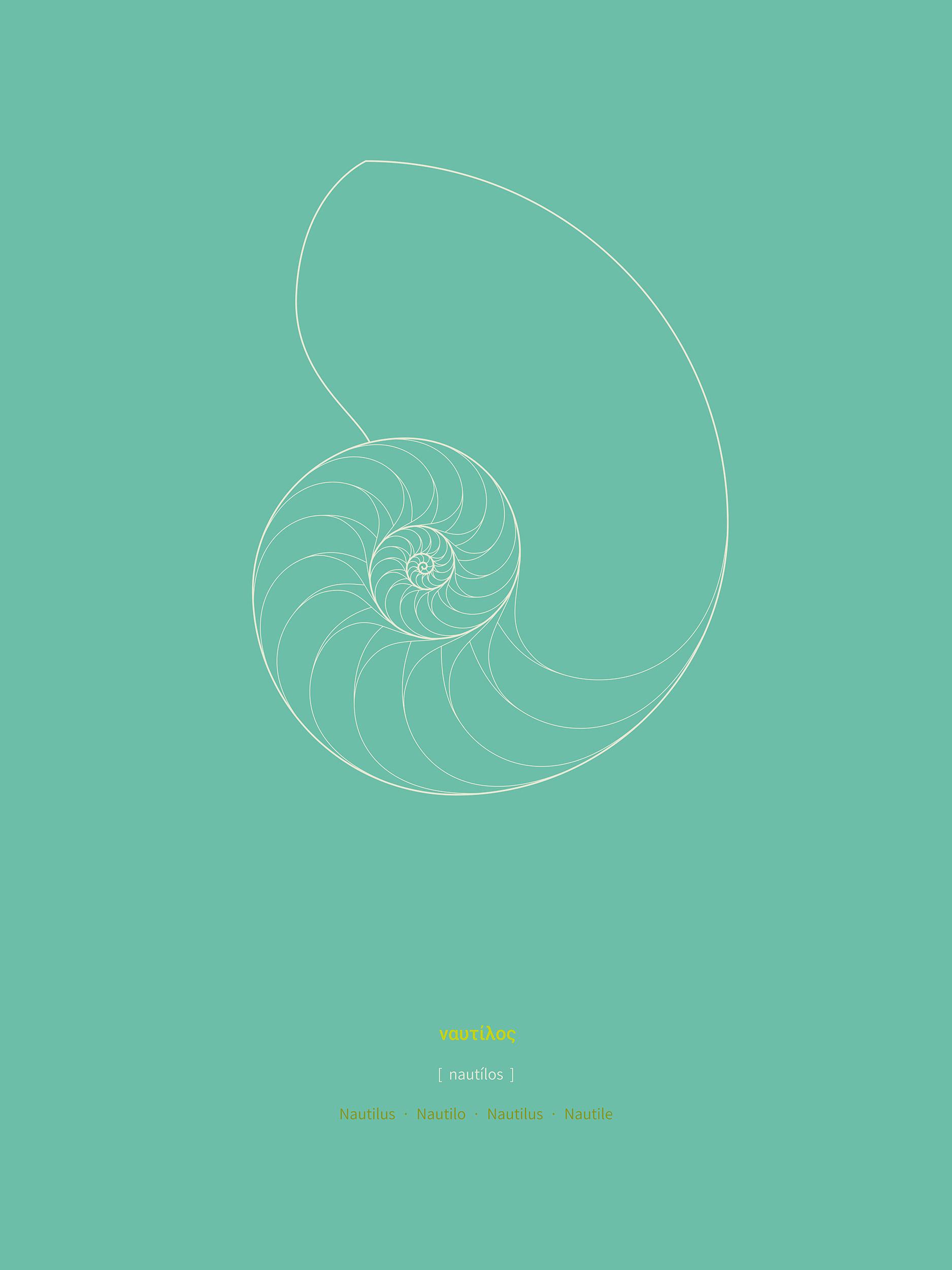 Nautilus , Purchase prints via  Society6