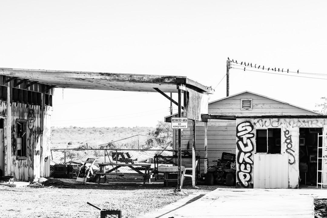 """Abandoned At The Salton Sea"" by Denise Vasquez"