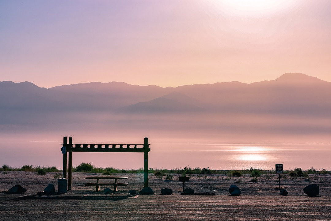 """It's No Picnic: The Beautiful Toxic Salton Sea"" by Denise Vasquez"