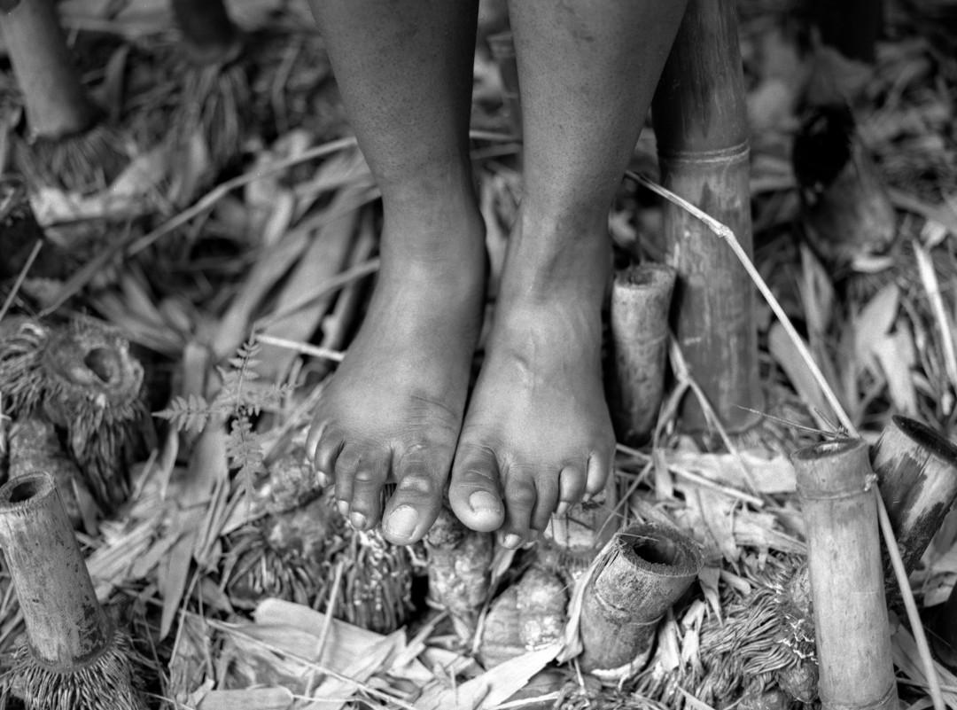 Jerald's Feet - Leona A Steiner