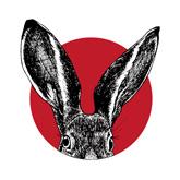 Saucy Rabbit Pinterest Logo.jpg