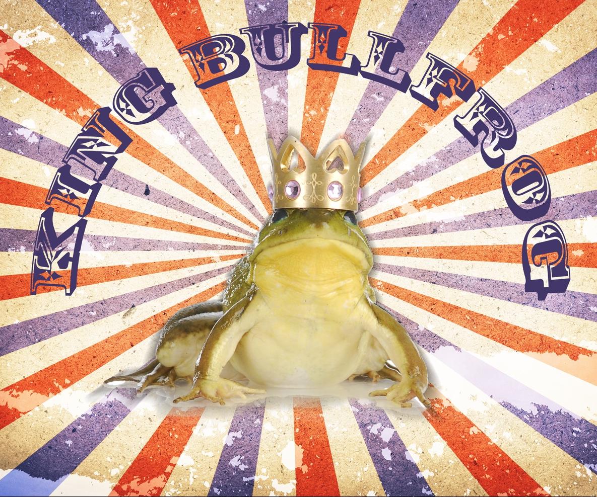 King Bullfrog Logo square.png