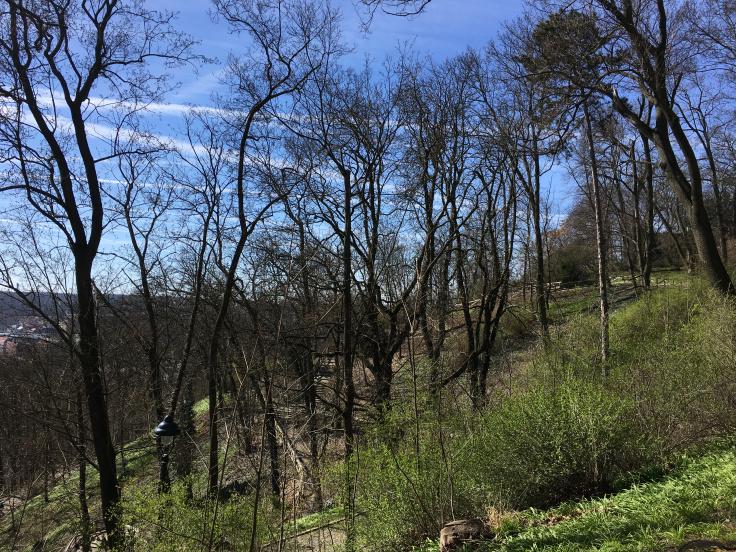 petrin-hill-garden-view.jpg