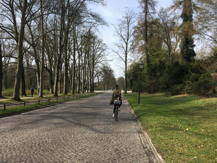 potsdam-biking-through-the-park.jpg