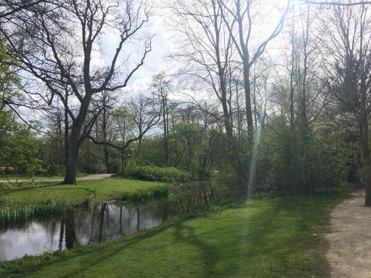 vondelpark-4.jpg