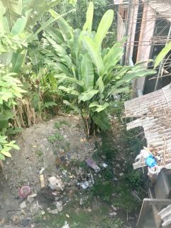 ubud-town-rubbish-pits.jpg