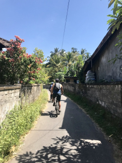back-roads-cycle-ubud-town-1.jpg