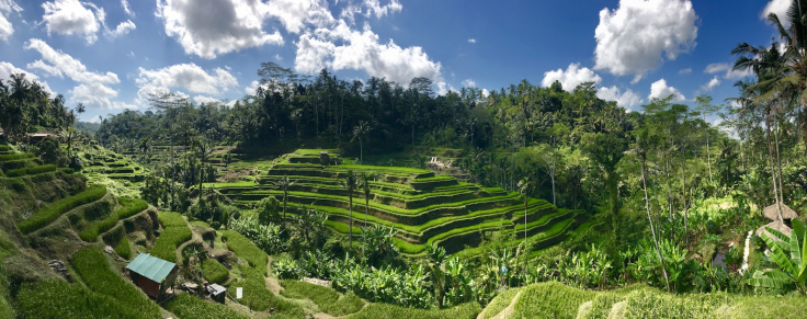 unesco-rice-terraces.jpg