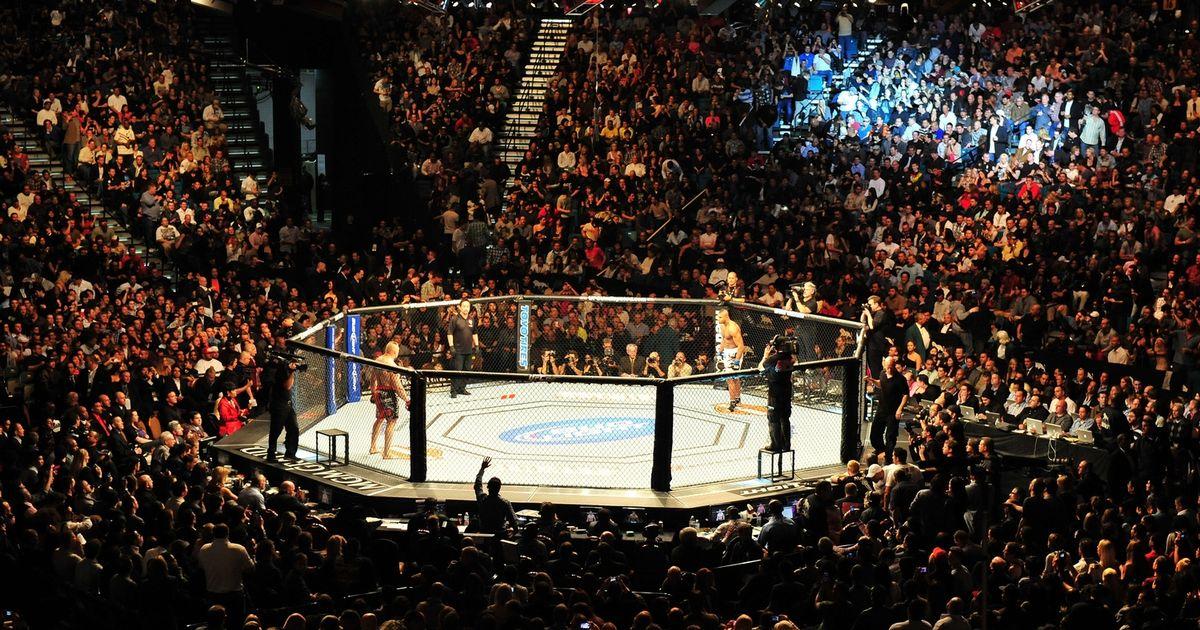 UFC-Octagon copy.jpg
