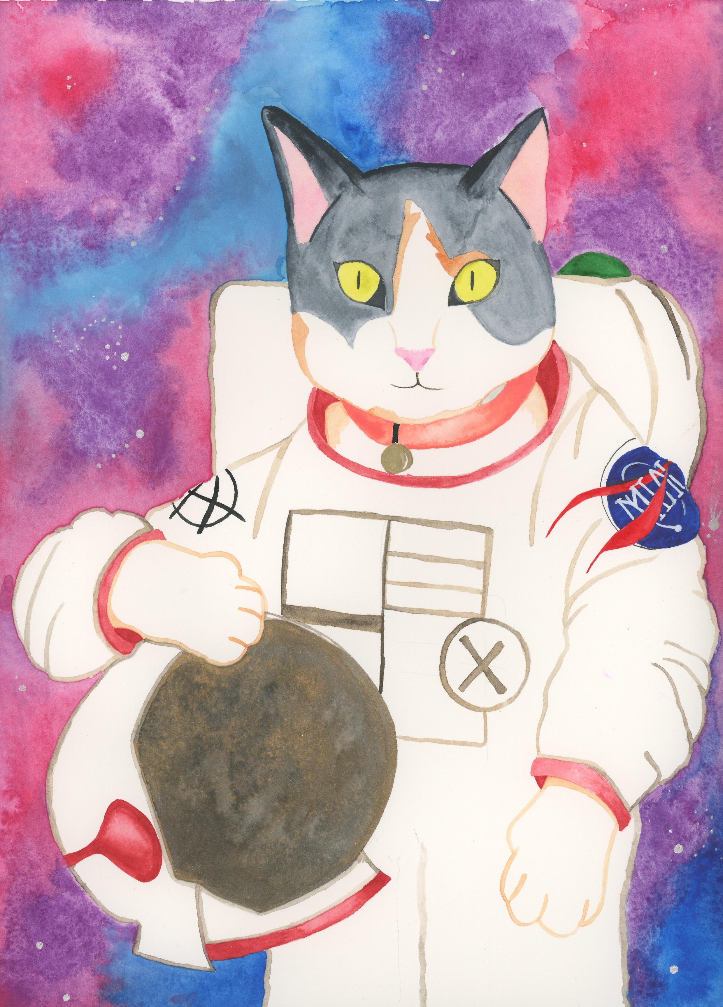 cat_stardust.jpeg