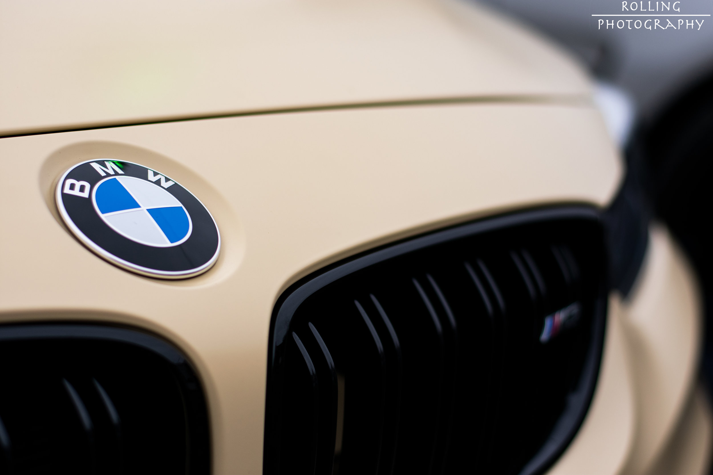 BMW M3 F80 Cream Roundel.jpg