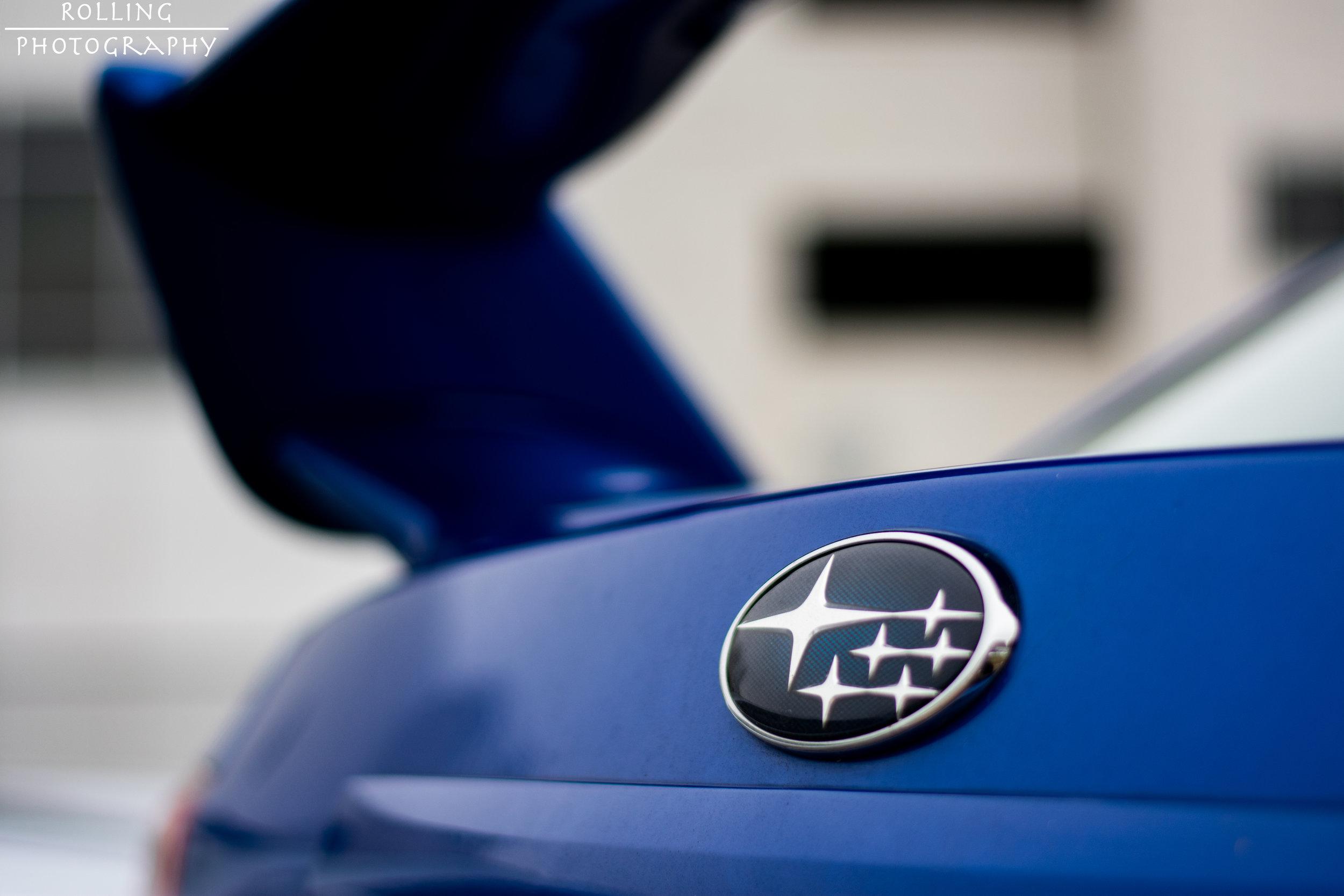 Tristan Subie Rear Logo.jpg