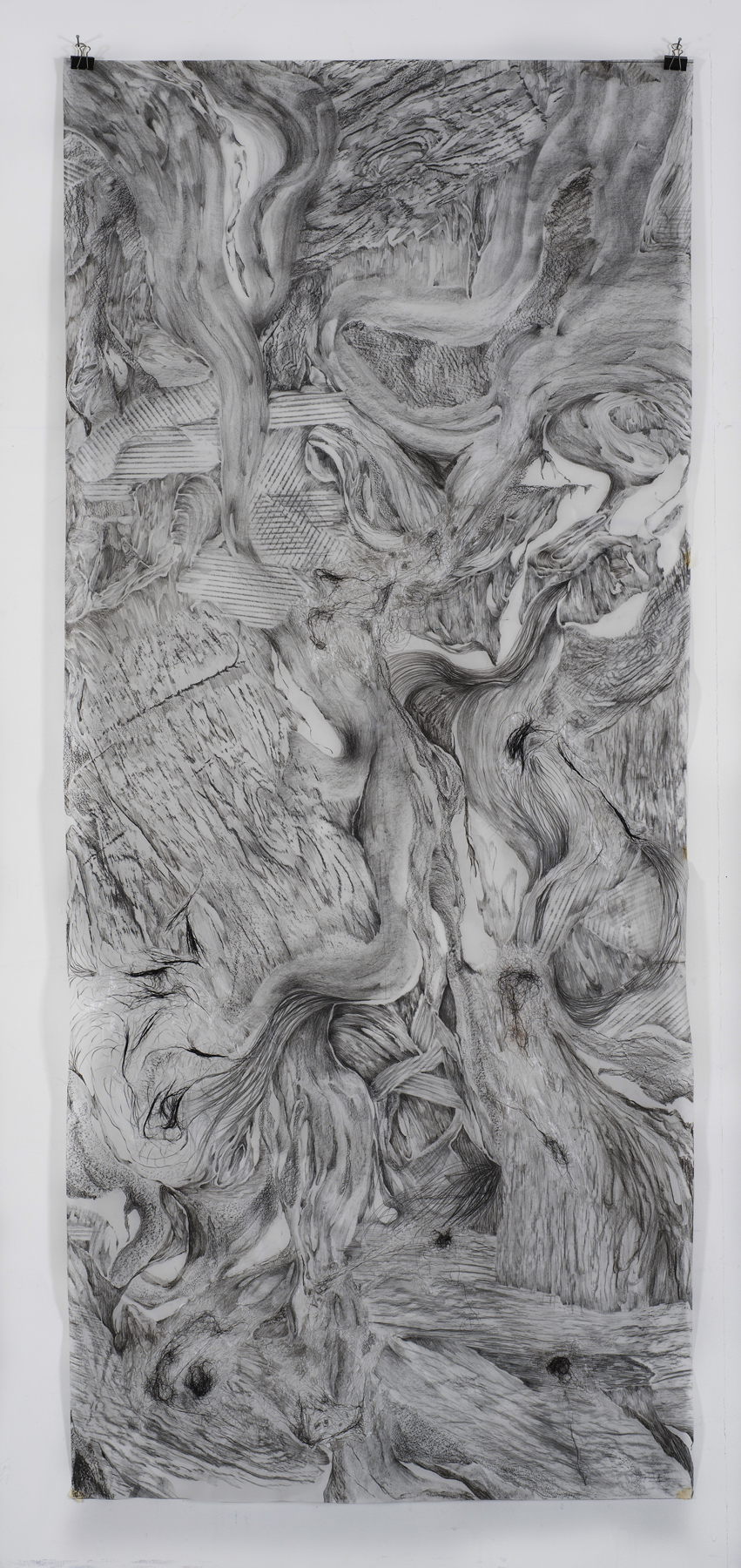 5.Charcole  on tracing paper, H213xW90cm 2017.jpg