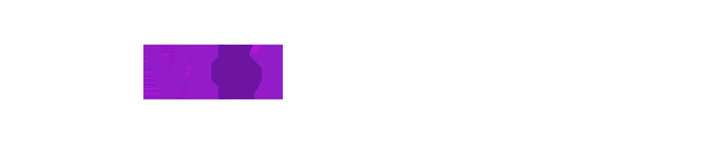 network logos pg4-v4.png