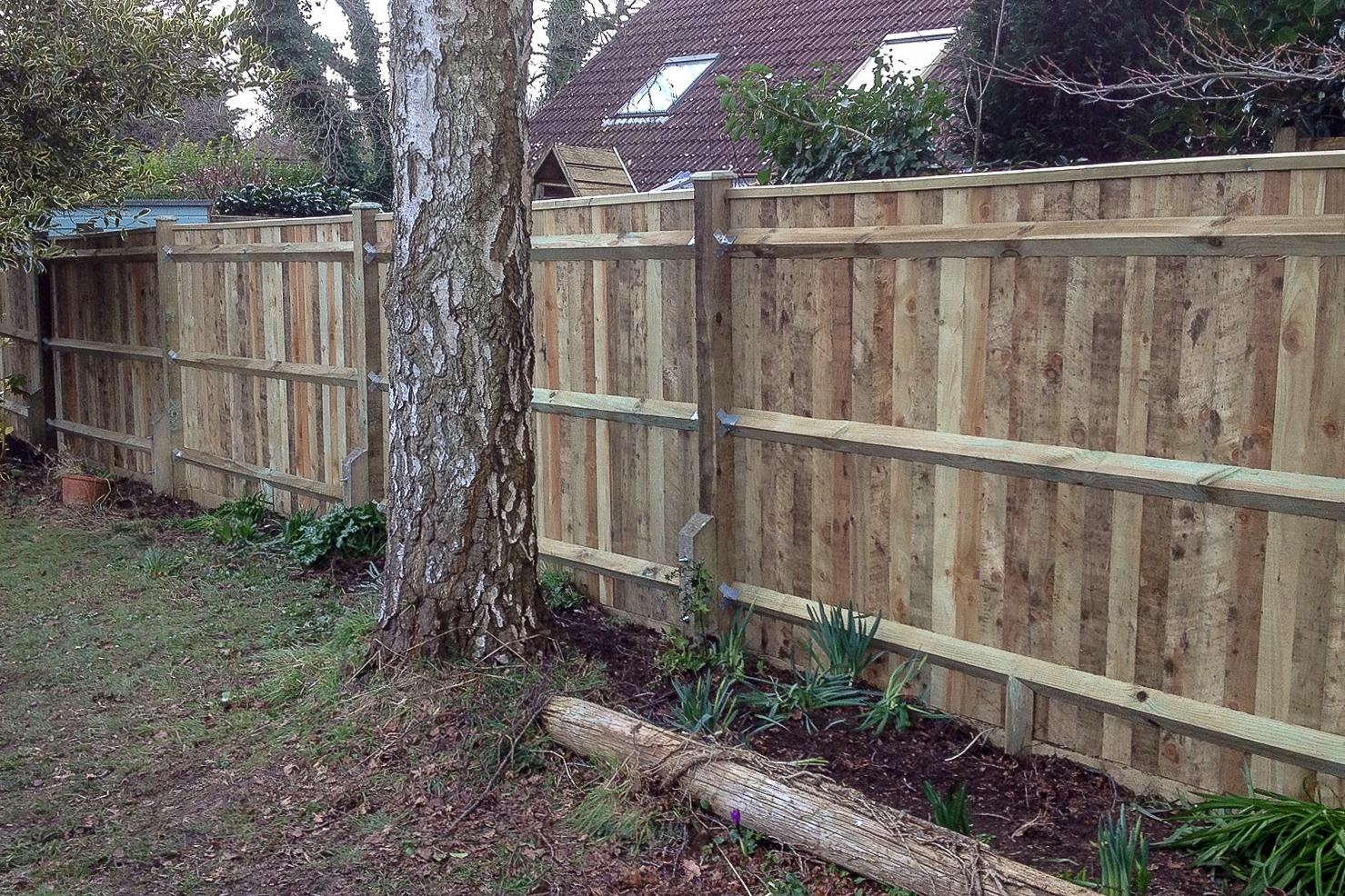 Fencing-002.jpg