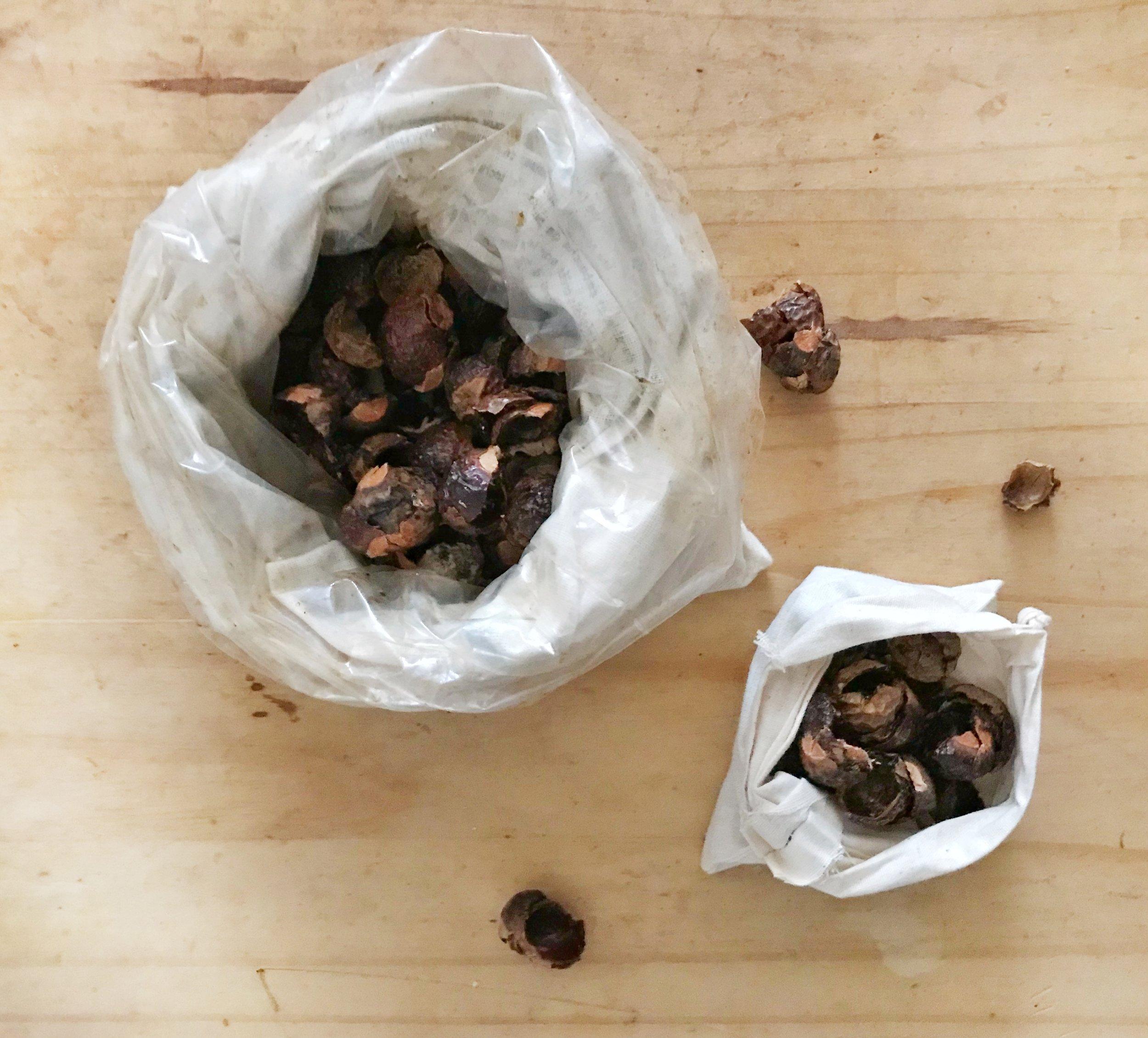 soapnuts.jpg