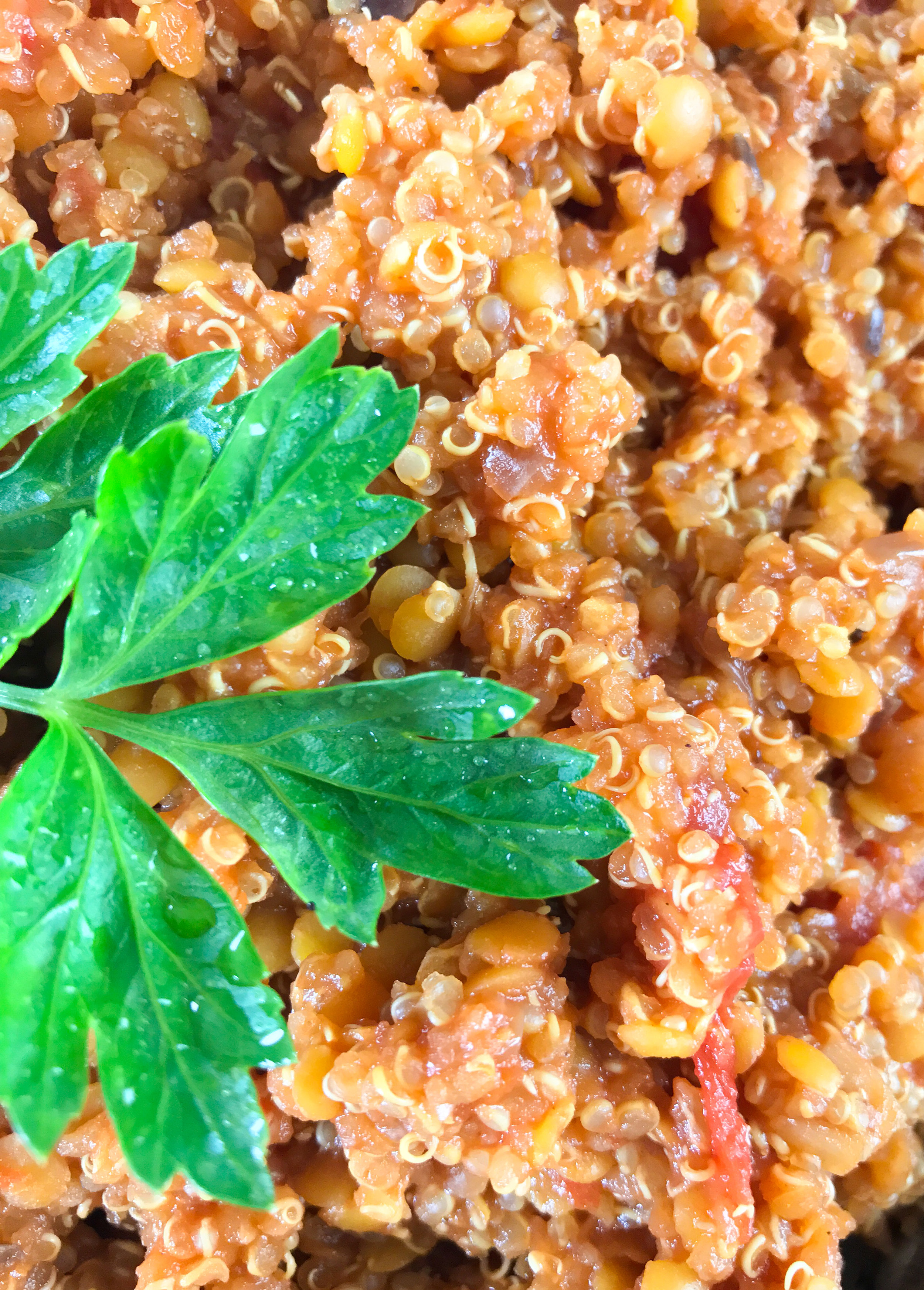 Tomato quinoa.jpg