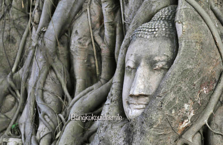 bangkoktourguide-watmahathat-ayutthaya-06.jpg