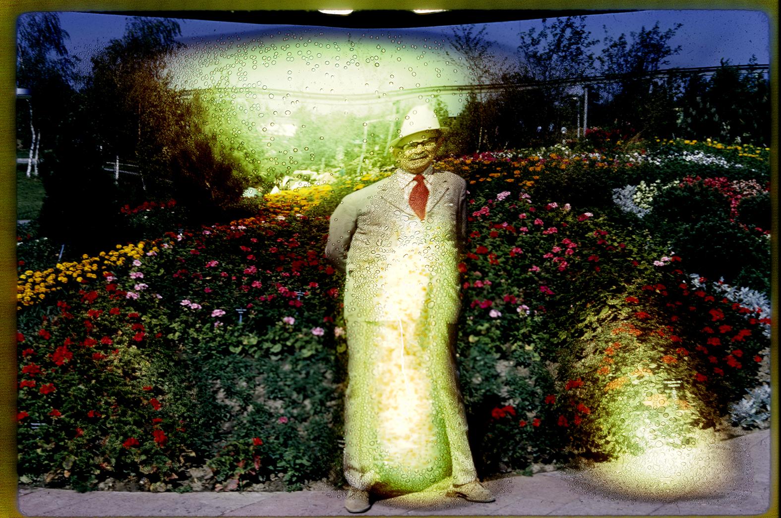 man in the garden.jpg
