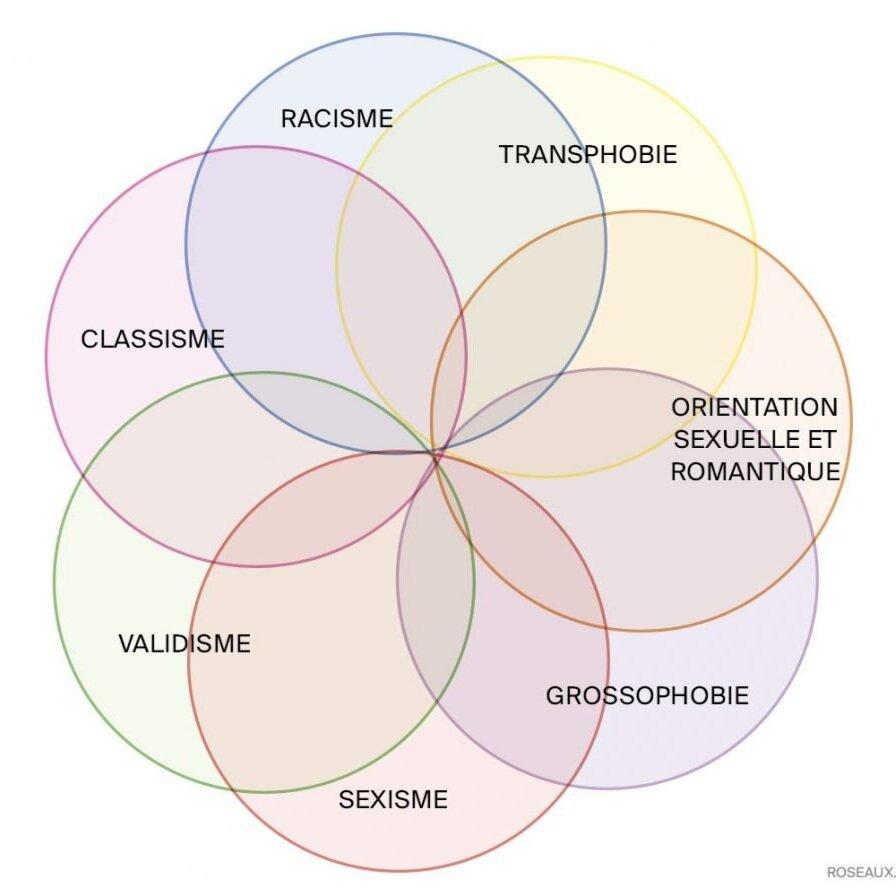 Illustration de l'article Kimberlé Crenshaw, l'intersectionnalité et le féminisme français, roseaux.co