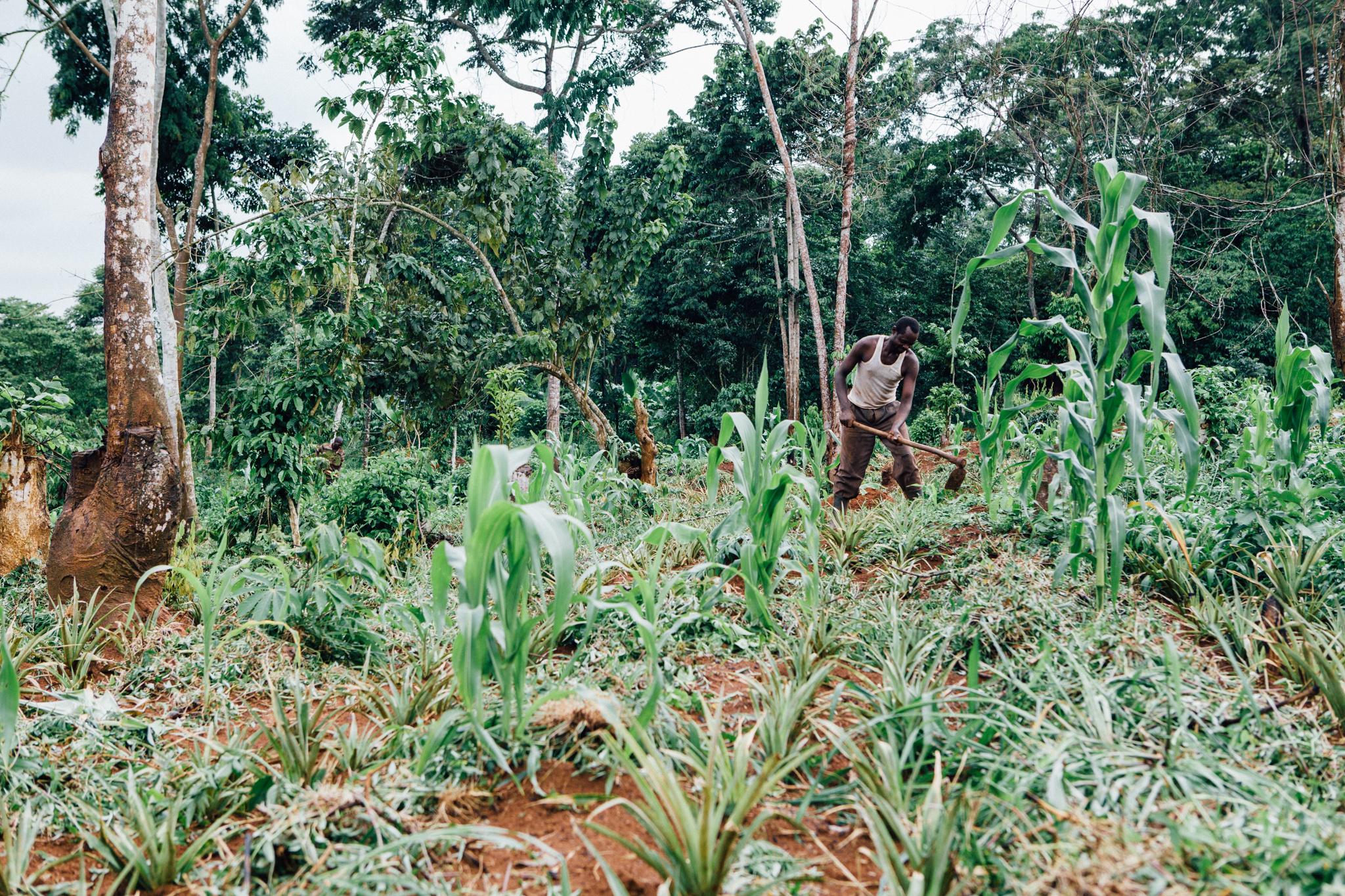 YSB Ugandajpg