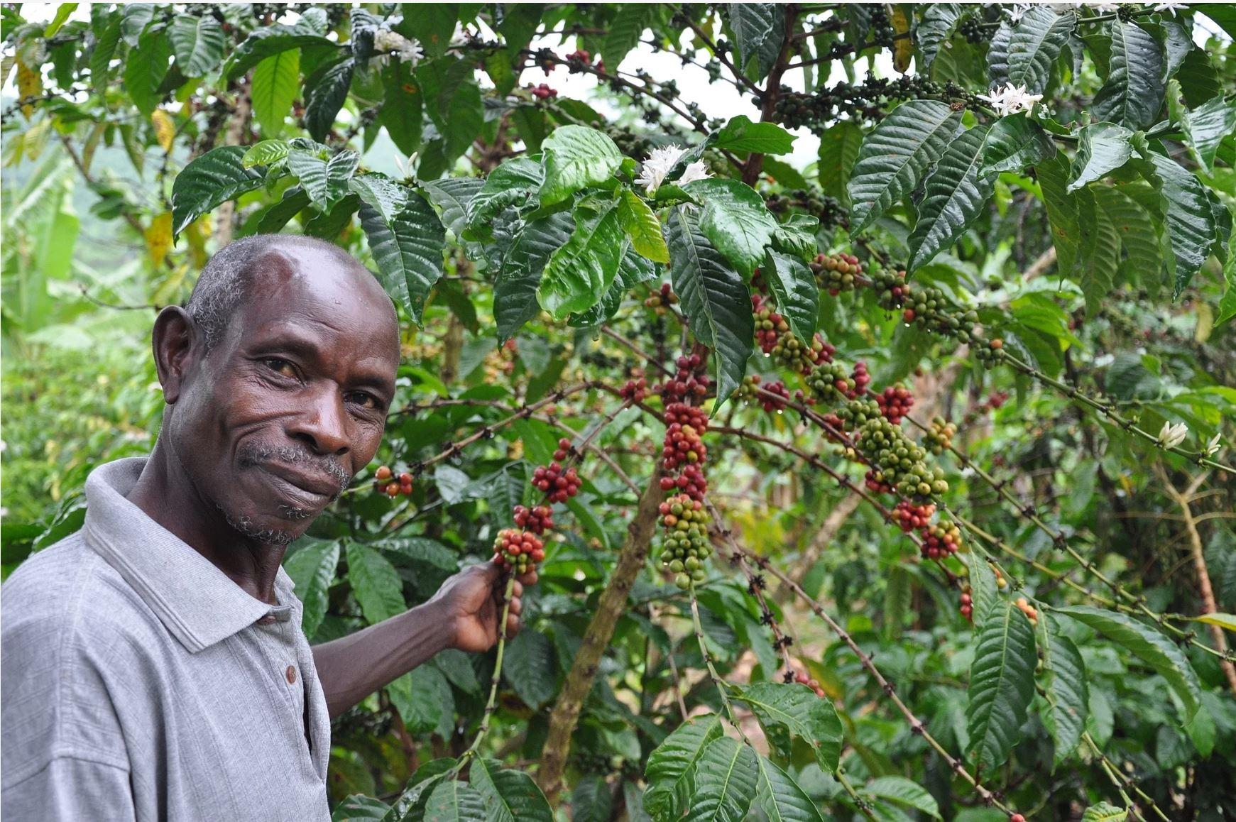 ACPCU in Uganda