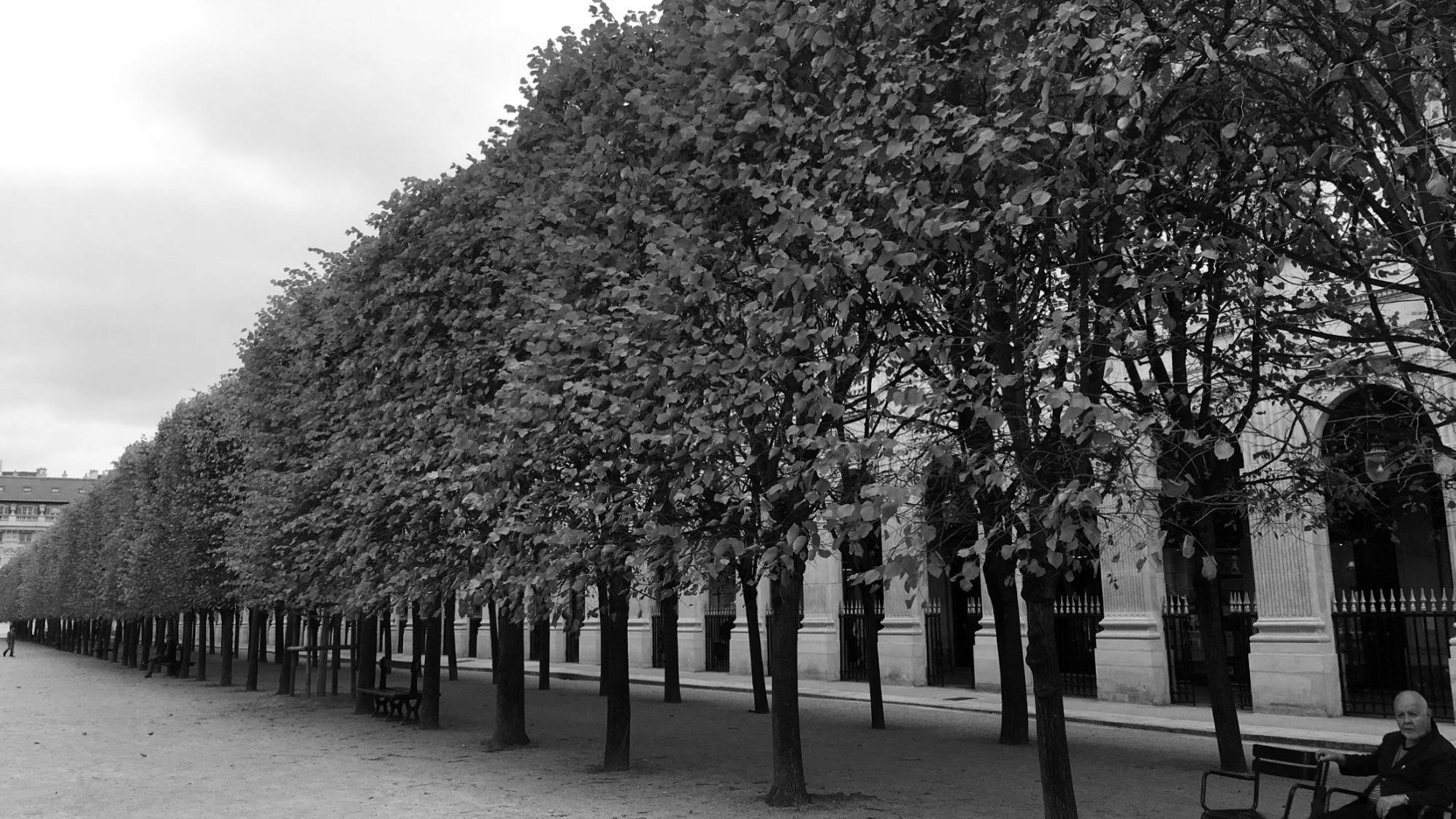 Strolling in Paris, 2009.