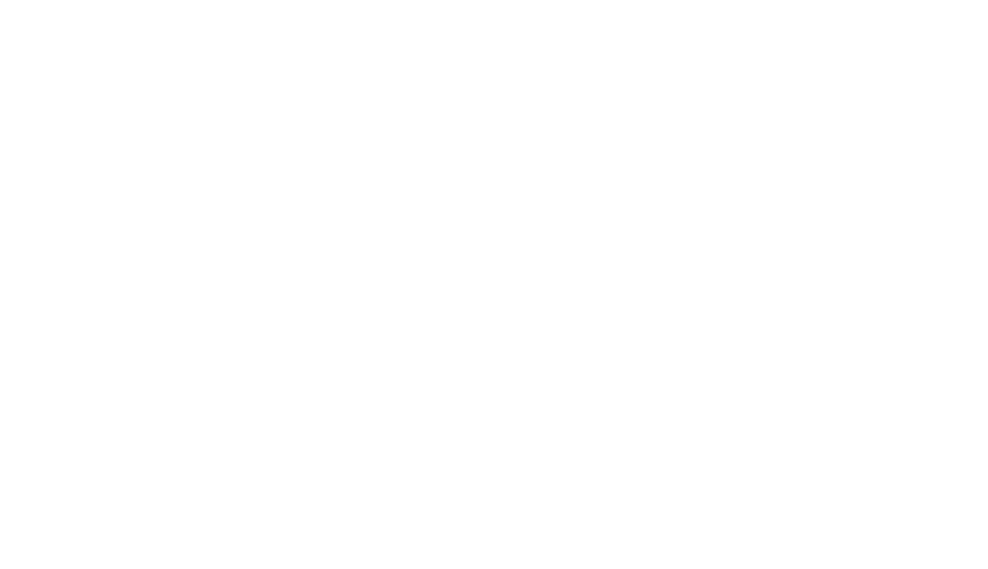 new-belgium.png