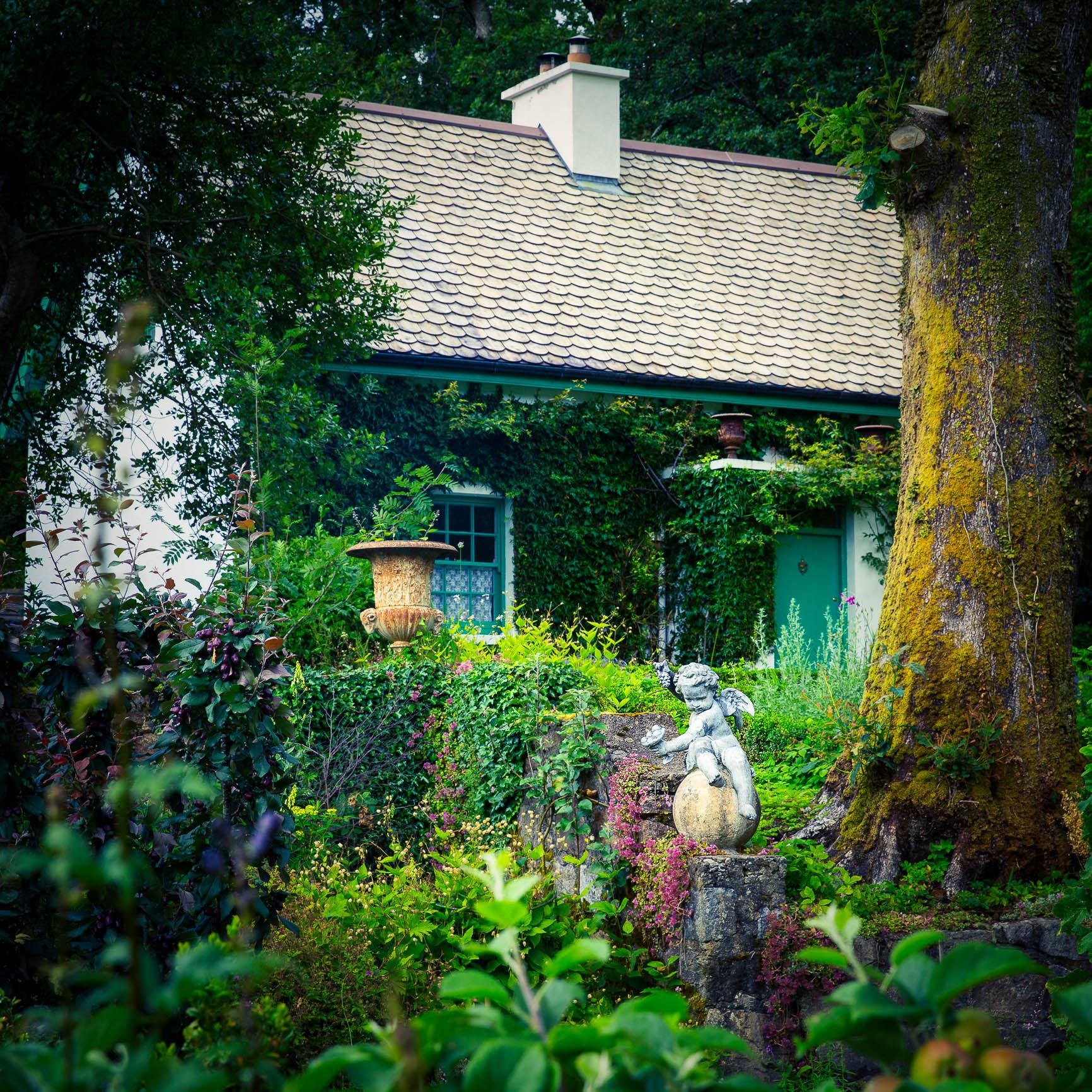 Angel garden-2.jpg