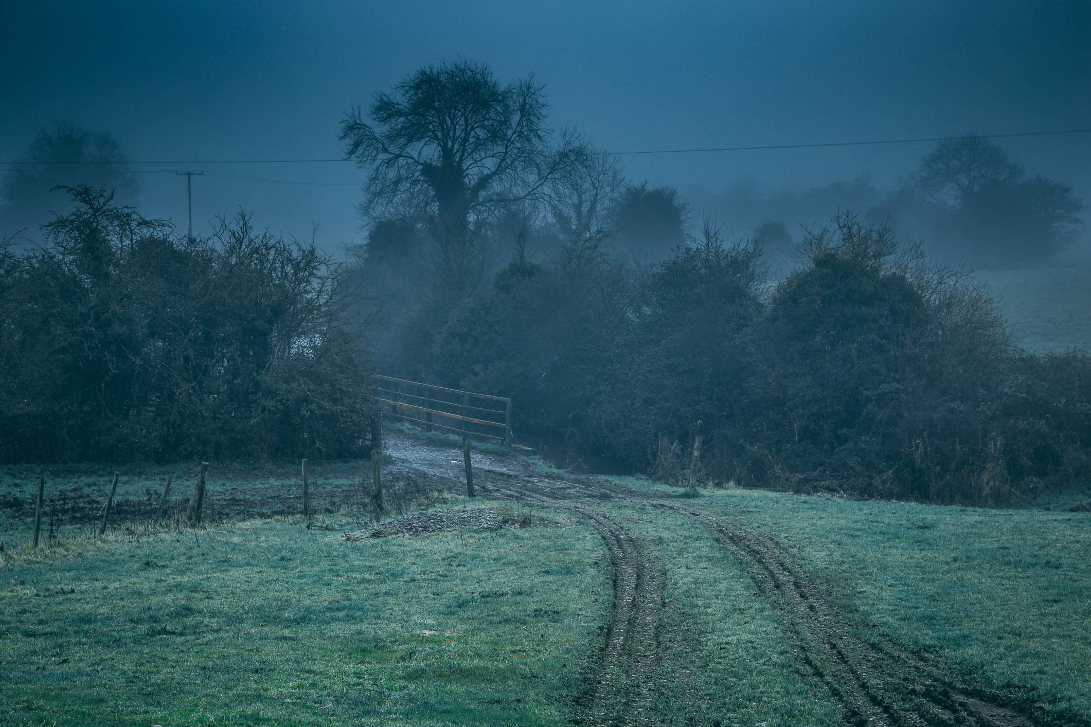 Cart tracks in Mist (1 of 1).jpg