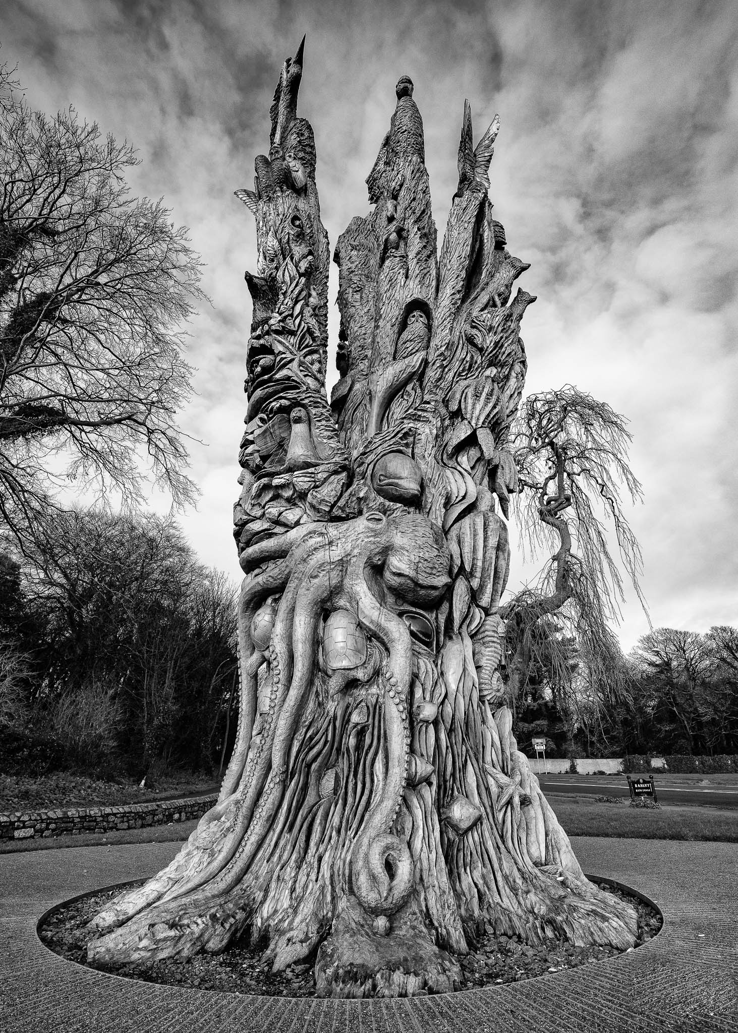 Carved Tree-.jpg
