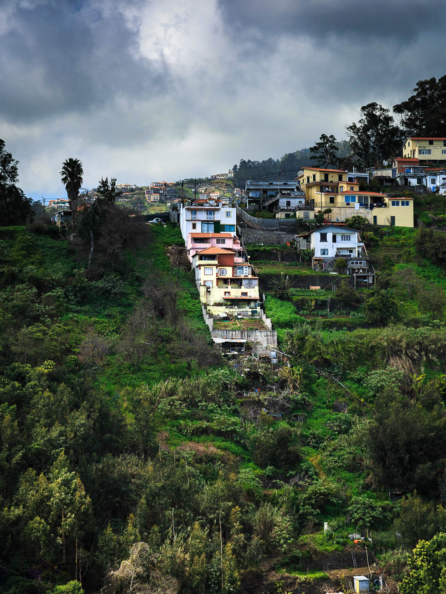 Madeira-7092.jpg