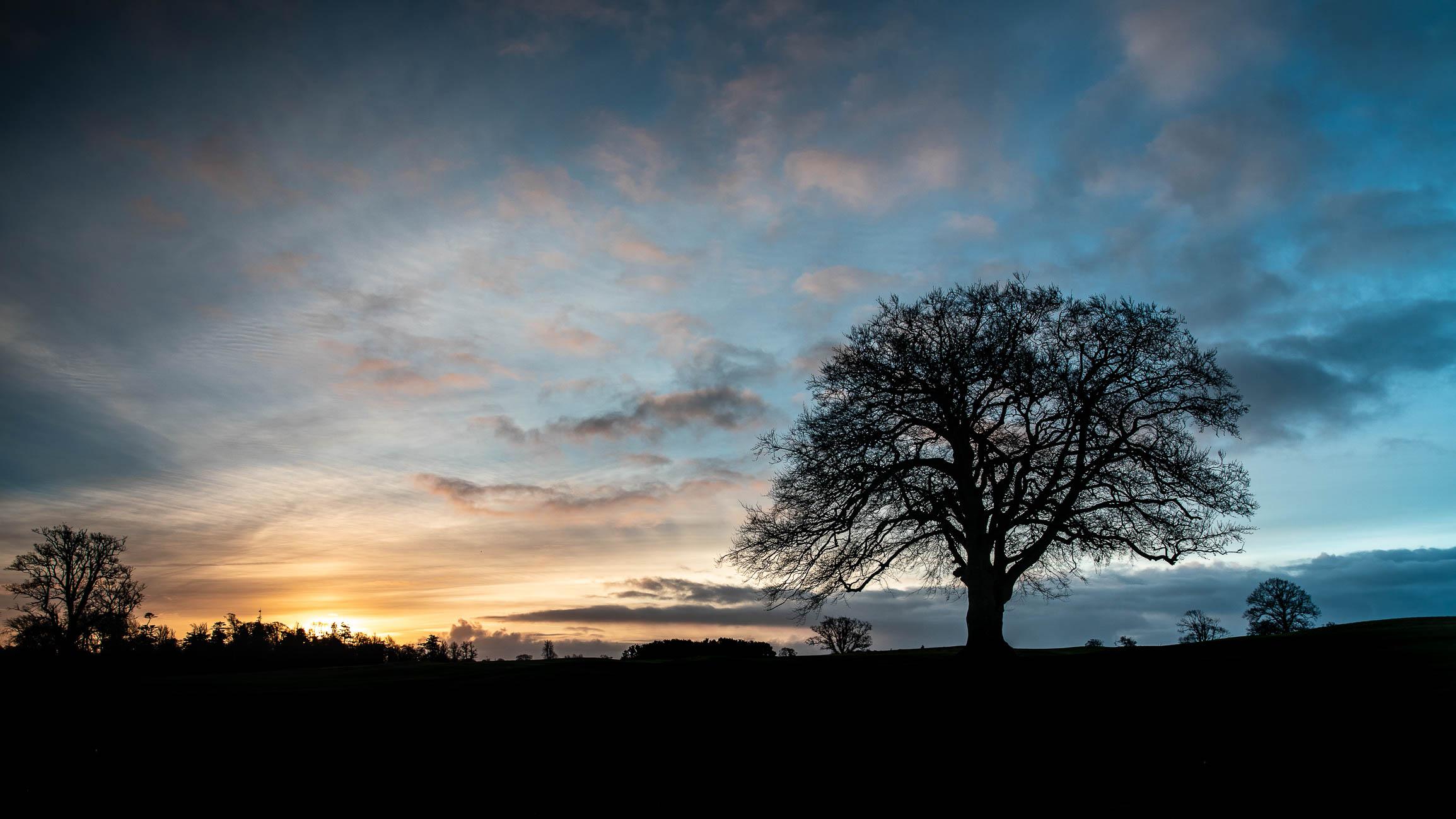 Silhouette Sunrise-3092.jpg
