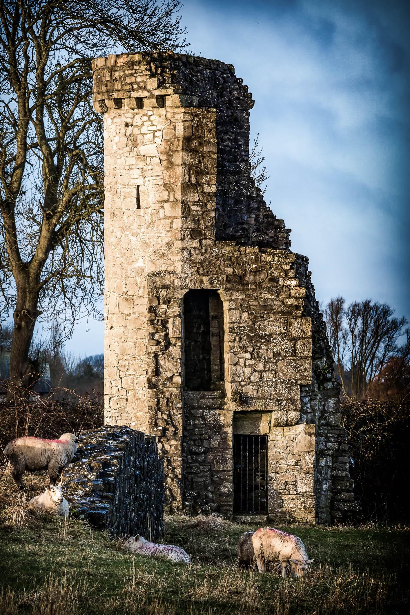Priory Wall tower no logo--2.jpg