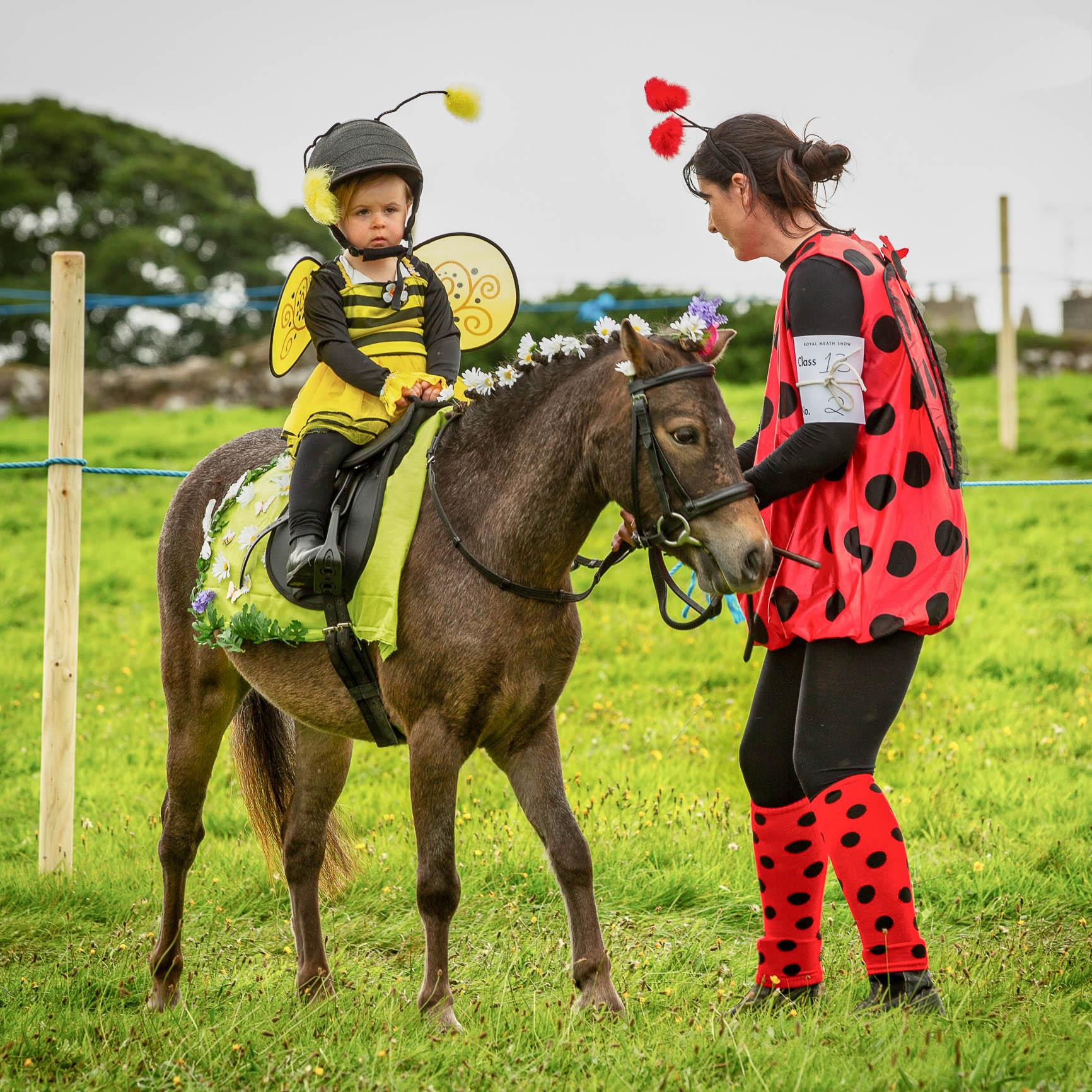 Horse riding-.jpg