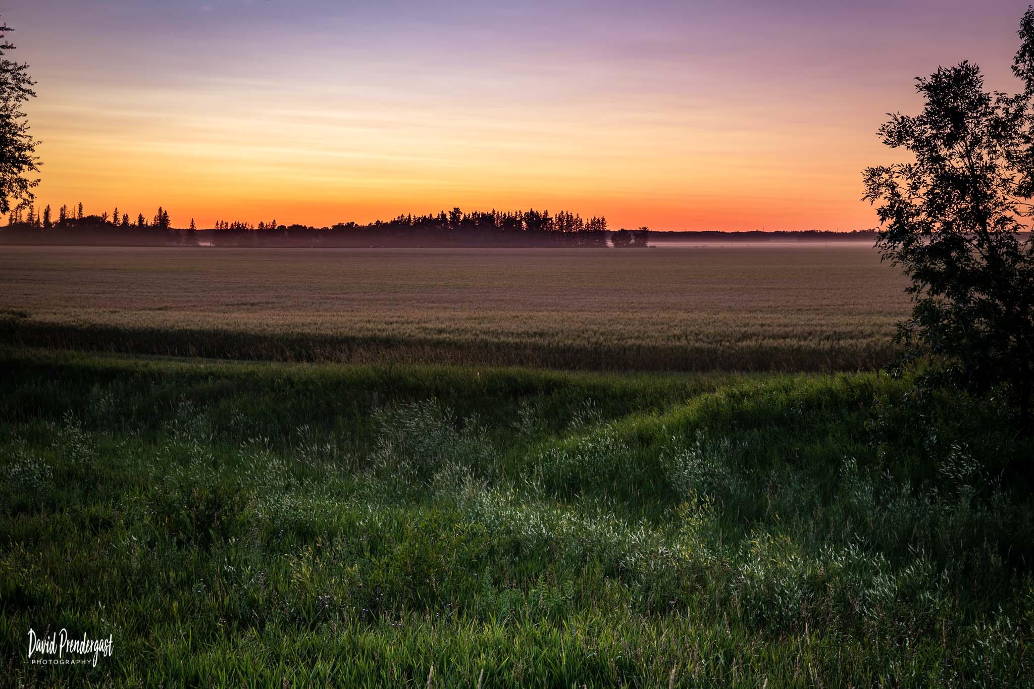 Prairie Moods - Sunset