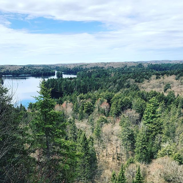 Good little getaway to Algonquin park for the long weekend! Always nice to catch a quick break away during the busy spring season!  #algonquin #muskoka #nature #hike #hiking #falls #ontario #landscapecontractor #hardscapedesign #hardscapes #landscaper #longweekend #landscapeinspiration #landscapedesign #hardscapedesign #waterfeatures #waterfalls
