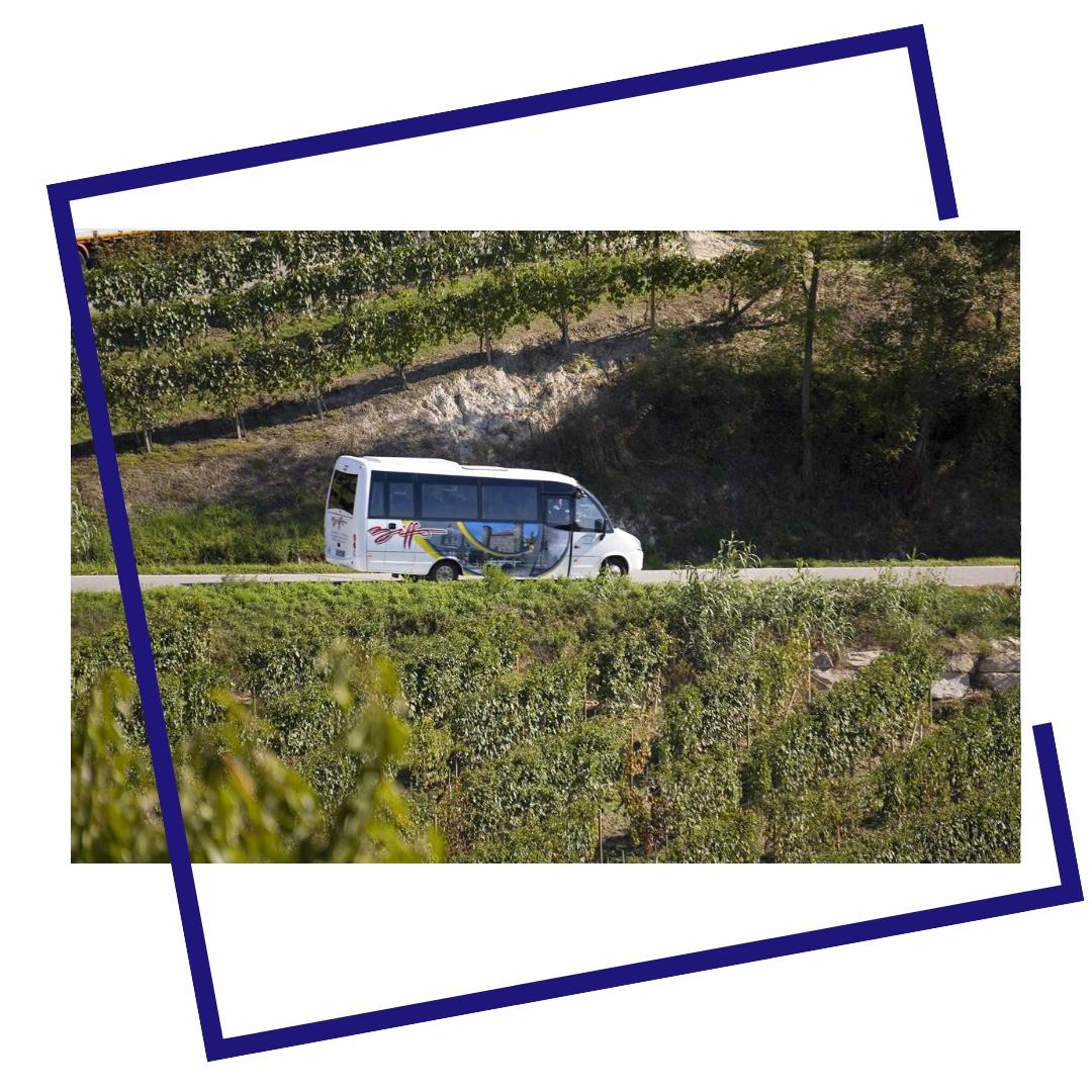 tour langhe biffo sac bra cuneo noleggio autobus bus con conducente viaggi trasporto turistico piemonte.jpeg