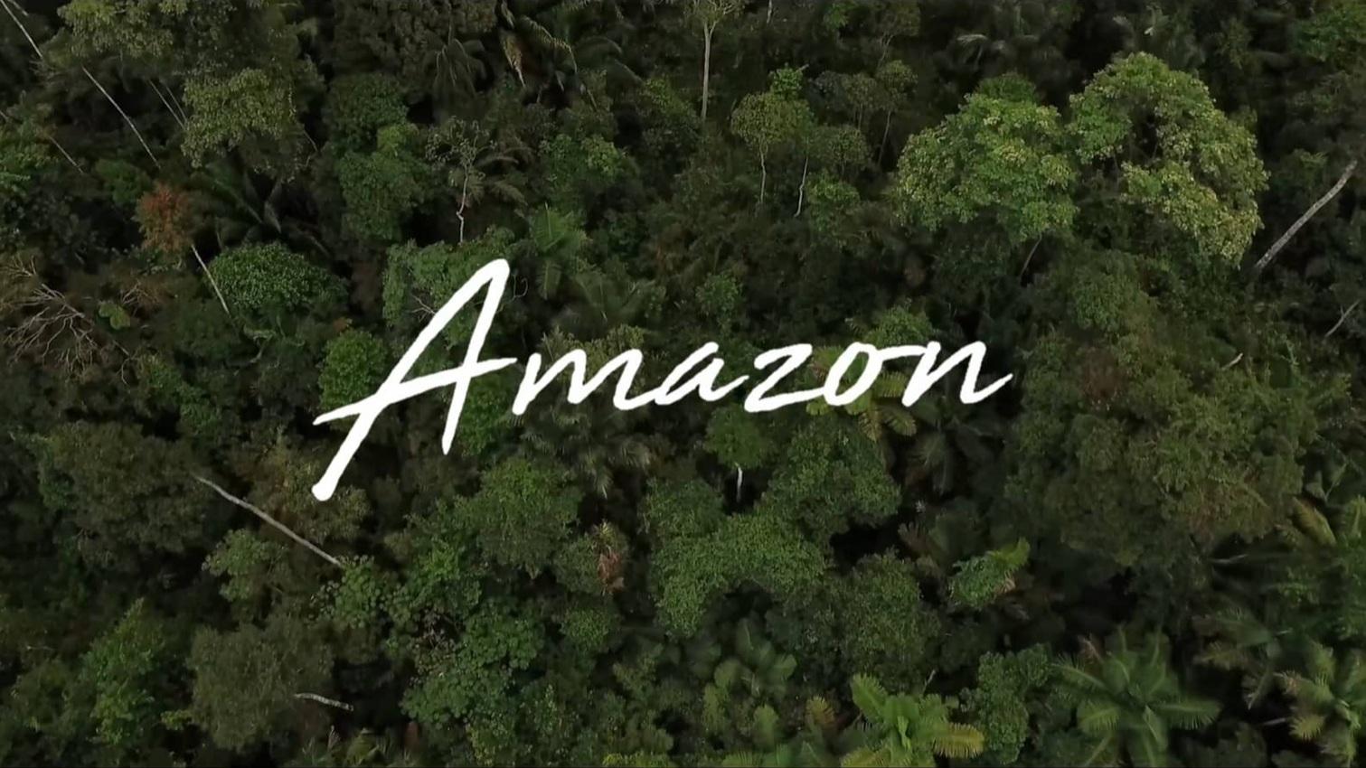 Certificado Leed - Fundação Amazonas Sustentável