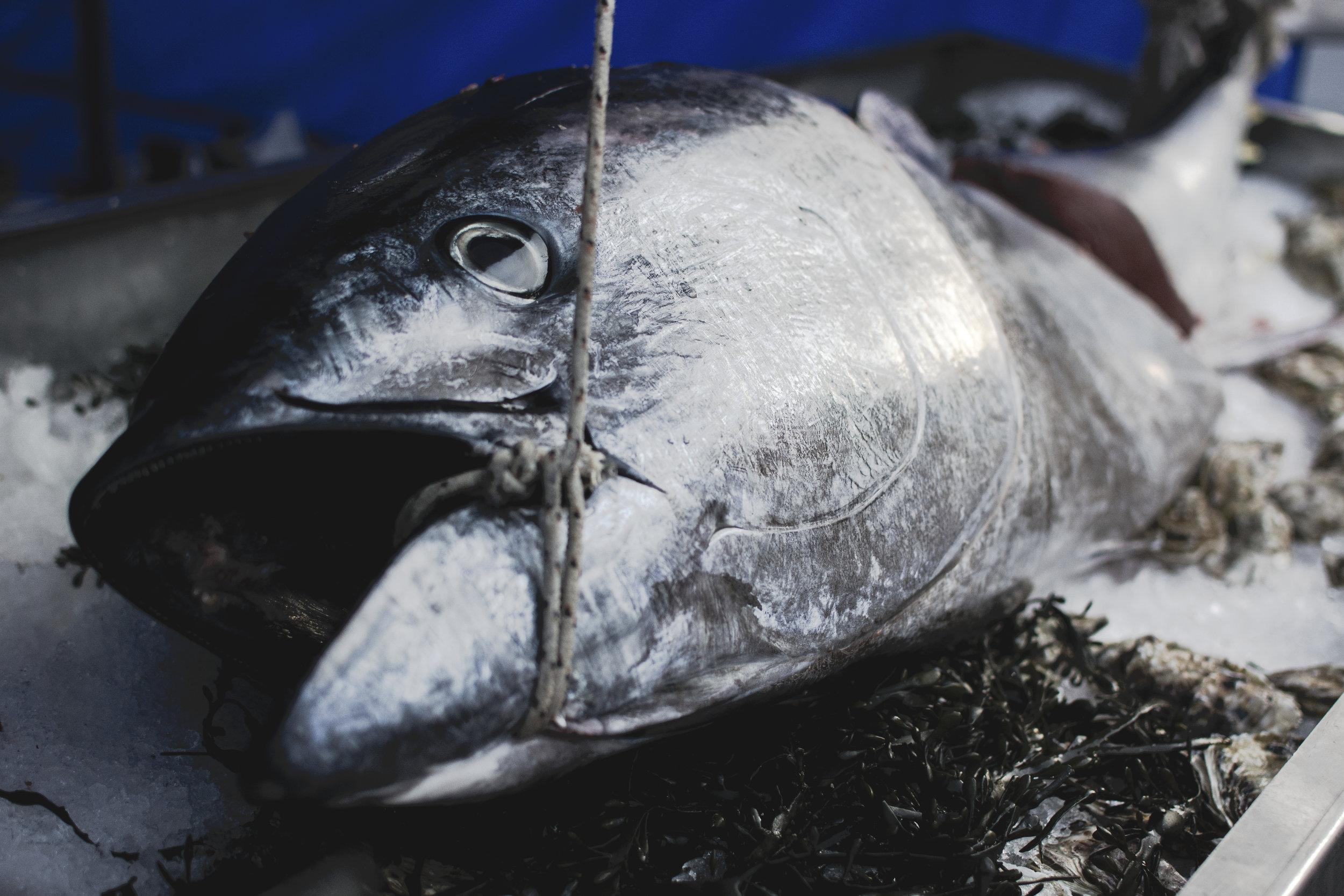Yama Seafood, Inc