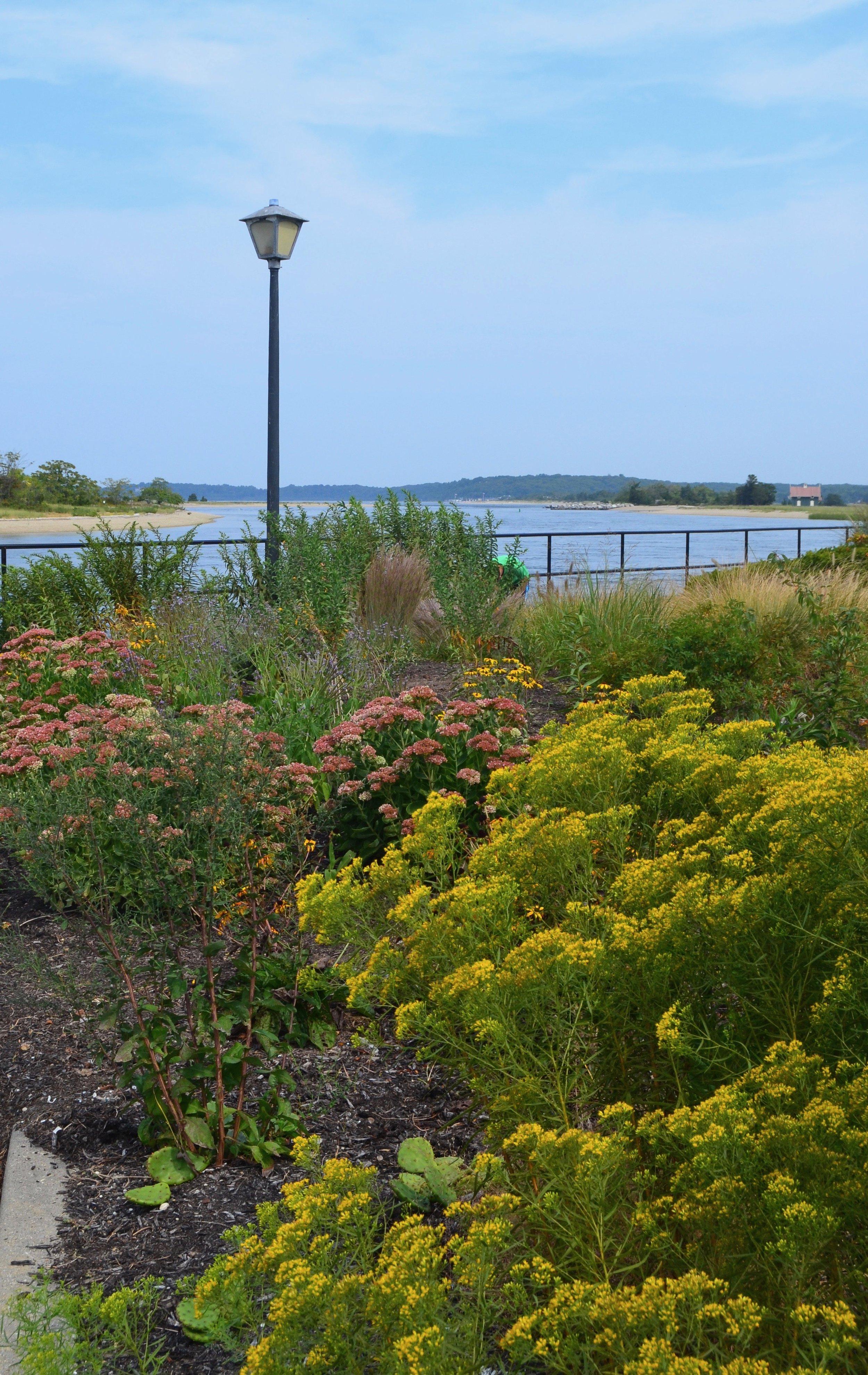 Rotary Memorial Garden, Stony Brook