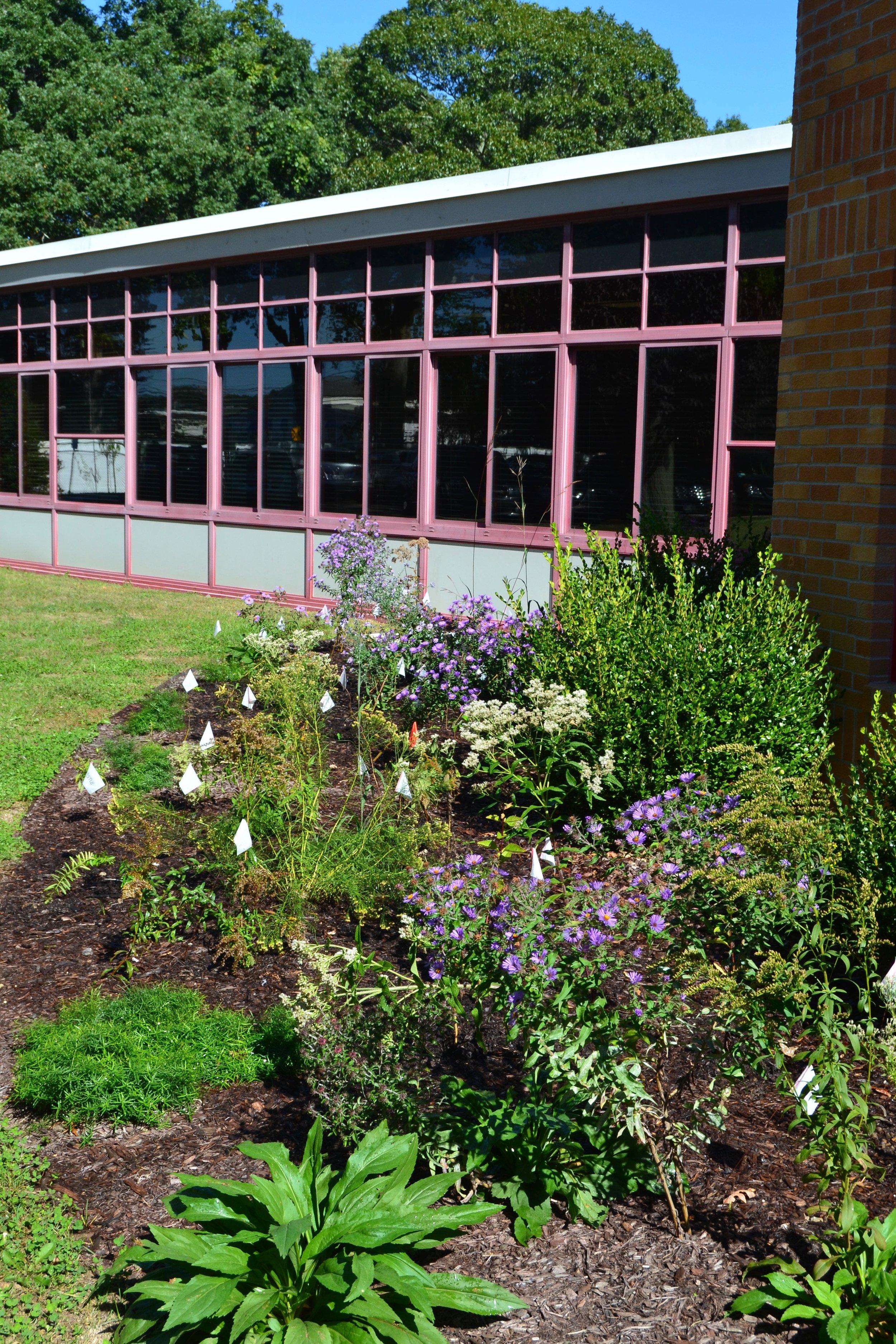 Cherry Avenue School, Sayville