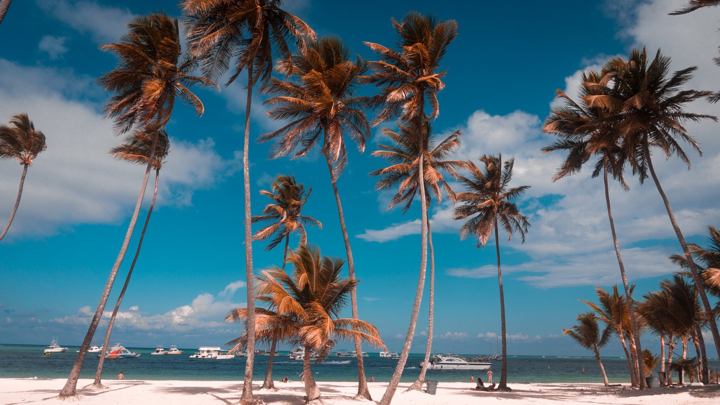Baloncesto Dominicano - DOMINICAN REPUBLIC