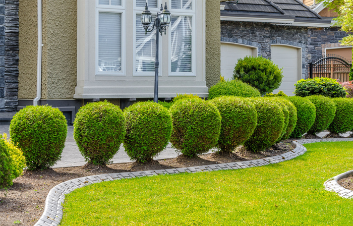 Landscaping - A Cut Above Lawn Service makes it easy for you to have the most beautiful yard on the block with our superior landscape service. Whether for your home or business, our detail-oriented crews take the time to understand your needs, so can enjoy the outdoor space you've always dreamed of.