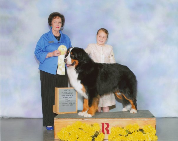 """Ch. Hickory's Master of the Sky """"Orry""""  (RIP)    Multiple Group Placing   Breeder: Amy Tucker ; Owners: Joelle and Richie Diamond"""