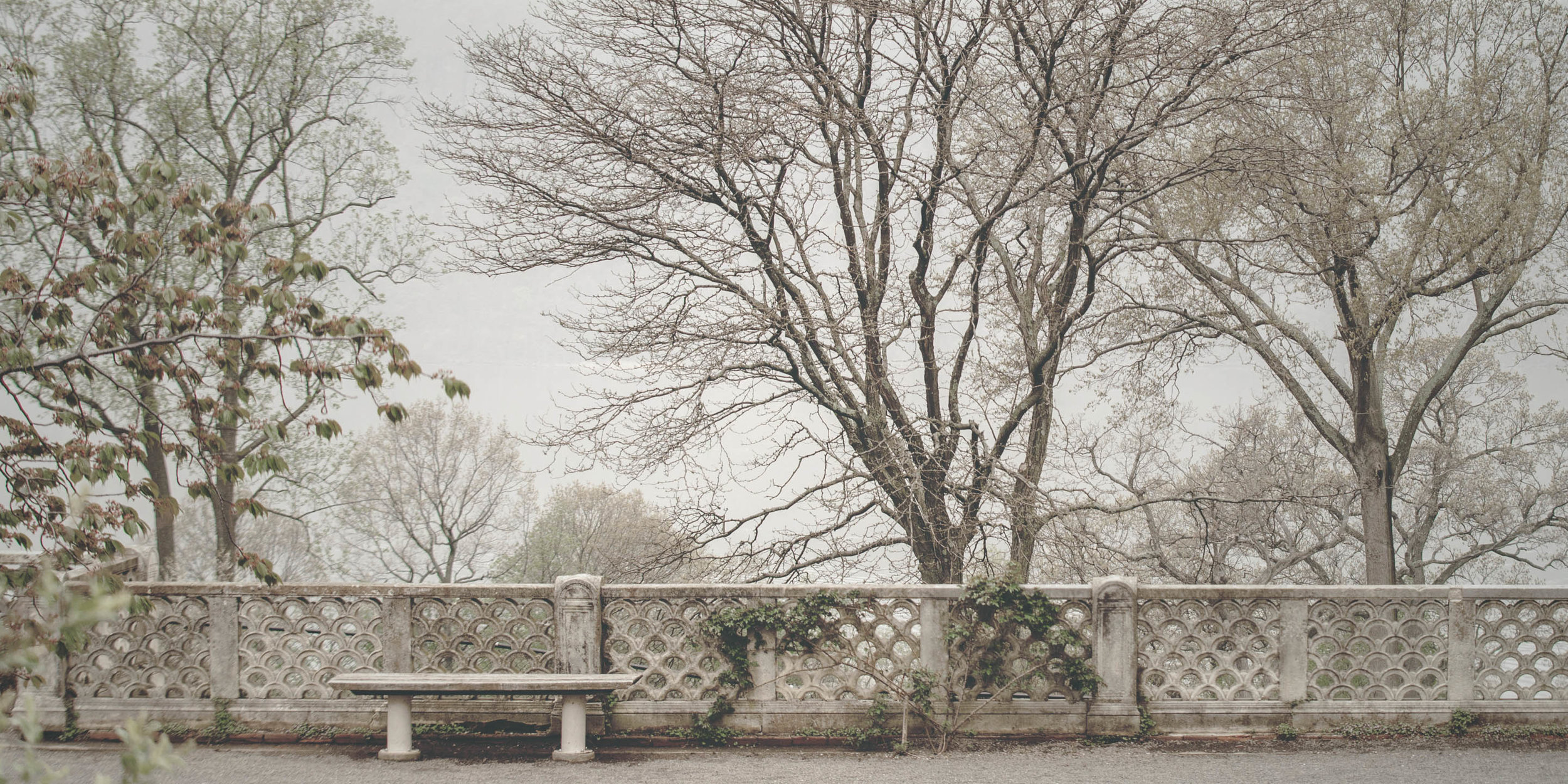 Untermyer Spring-2459.jpg